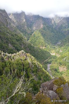 View from Balcões, Madeira island, Portugal. A very easy walk along the levadas in Madeira.