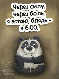 (48) Одноклассники Life Humor, Man Humor, Funny Phrases, Funny Quotes, Funny Happy Birthday Images, Famous Phrases, Russian Quotes, Sarcastic Humor, Wisdom Quotes