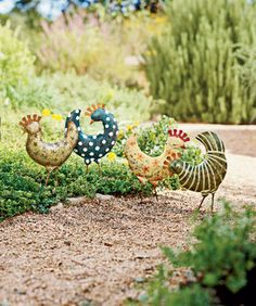 Doesn't every garden need some funky chickens?!