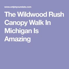 The Wildwood Rush Canopy Walk In Michigan Is Amazing  sc 1 st  Pinterest & Free Tunnel of Trees Map   The Tunnel of Trees   Travel ...