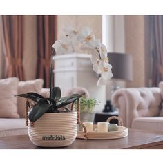 rattan pot Rattan Basket, Planter Pots, Vase, Design, Home Decor, Decoration Home, Room Decor, Vases