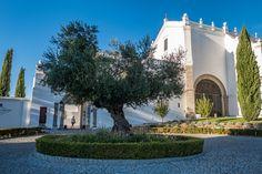 Bezoek aan veelzijdig Portugal (Alentejo) - via Meersmaak 30-10-2016 | Alentejo is gekend om zijn eeuwenoude, als werelderfgoed erkende, steden Evora en Beja, zijn wijnproductie, zijn witgekalkte huizen en de immens uitgestrekte velden. Koeien en schapen langs de weg zijn geen uitzondering. Foto: Convento do Espinheiro