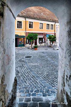 Szentendrei hangulat - Dunakanyar - Dunántúl Hungary Hungary Travel, Heart Of Europe, City Landscape, European Travel, Places To Travel, Around The Worlds, Country, Vacation Travel, Slovenia