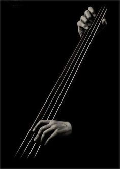 Black and White Photography/Art I love the Bass Guitar or Cello! This is a very simplified photo but says a great deal of what it's about! Black White Photos, Black N White, Black And White Photography, Jazz Art, Jazz Music, Music Mix, Business Photo, Double Bass, Light And Shadow