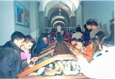 Apertura straordinaria del Museo dei Fossili di Fidenza