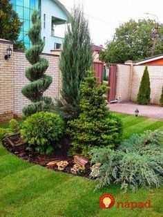 60 Beautiful Front Yards And Backyard Evergreen Garden Design Ideas - artmyideas Landscape Design, Evergreen Garden, Succulent Landscaping, Succulent Landscape Design, Backyard Garden, Shade Landscaping, Backyard Landscaping, Backyard, Front Garden Design