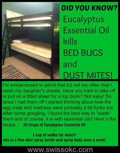 Use SwissJust Eucalyptus Essential Oil to kill bed bugs! www.swissokc.com