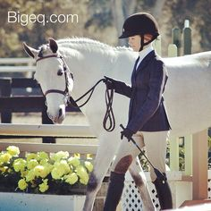 We're dreaming of a white Christmas - follow along as we feature lovely gray horses on our account throughout December. Here's the first, such a cutie from #hitsocala several years ago. :) #bigeq #hunterjumper #ponyhunter