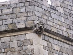 Gargoyles on Windsor Castle, above the Henry VIII Gate.  July 2009