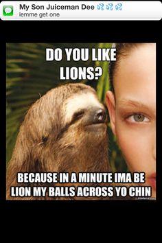 Lol! #funny #sloth
