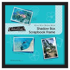 MCS 12 inches x 12 inches Scrapbook Shadow Box
