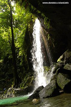 Emerald Pool Waterfall View - Photo | Dominica Island: Photo Travel Guide #placesihavebeen