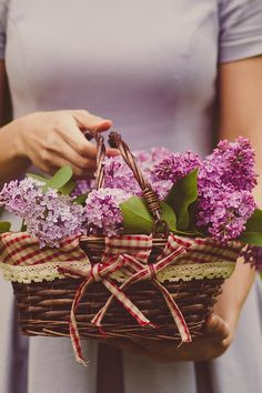 Woman Carrying Purple Flowers · Free Stock Photo