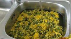 Miere de papadie naturala - YouTube Seaweed Salad, How To Dry Basil, Macaroni And Cheese, Herbs, Canning, Ethnic Recipes, Youtube, Food, Syrup