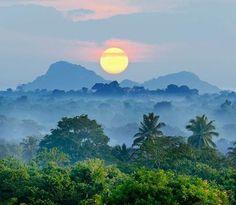 Het prachtige landschap van Sri Lanka bij zonsopgang. Kijk voor meer reisinspiratie op www.nativetravel.nl