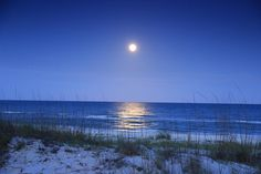 Moonrise over St. George Island by GVN 1, via Flickr