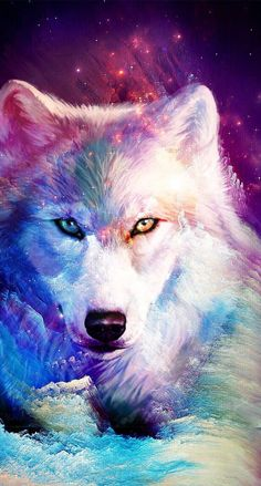 Ideas For Wallpaper Galaxy Wolf wallpaper 820710732077631336 Cute Animal Drawings, Cute Drawings, Galaxy Wolf, Wolf Artwork, Wolf Painting, Fantasy Wolf, Wolf Spirit Animal, Wolf Pictures, Mythical Creatures Art