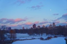 NYC, Central Park. 2017   gabrielaprias Central Park, Nyc, Celestial, Sunset, Outdoor, Outdoors, Sunsets, Outdoor Games, The Great Outdoors