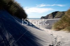 Sand Dunes, Wharariki Beach, Golden Bay, New Zealand Royalty Free Stock Photo Pool Dance, Wooden Path, Bay News, Photography For Sale, Beach Photos, Image Now, Dune, New Zealand, Paths