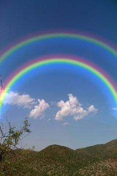 "Double rainbows. Wikipedia: ""In a ""primary rainbow"", the arc shows red on the outer part, and violet on the inner side. This rainbow is caused by light being refracted while entering a droplet of water, then reflected inside on the back of the droplet and refracted again when leaving it.  In a double rainbow, a second arc is seen outside the primary arc, and has the order of its colours reversed."""