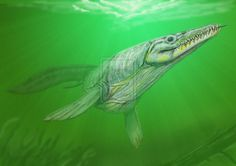 Goronyosaurus nigeriensis by ~DiBgd