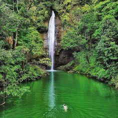 "Parque nacional natural Uramba Bahía Málaga 🇨🇴 La Naturaleza es Vida 🏃♂🌳💧 @mochileco_ . . . #urambamalaga #SENDERISMOCOL #senderismo…"" Colombia Travel, Travel Inspiration, Waterfall, Beautiful Places, River, Nature, Outdoor, Instagram, Bahia"