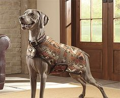 What a beautiful coat! Click to view larger image(s)