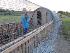Compost-Included Deep Litter Hoop Coop - BackYard Chickens Community