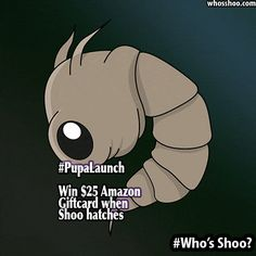 #WhosShoo #PupaLaunch