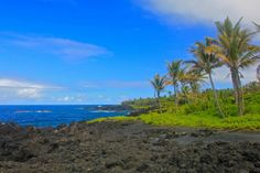 This is it, the spot to enjoy lava and vegetation running directly into the deep blue ocean waters. | Picfari.com