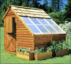 a shed which can act as a cold-house for plants during the winter, and it can double as a tool shed