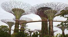 Záhrady u Bay v Singapure