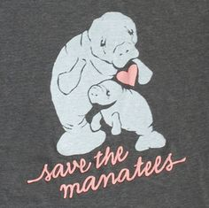 i know it's strange, but i have a mild obsession with manatees!