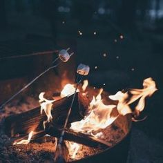 - Bonfire at Sara's for youth group. Autumn, a bonfire, Sara and the Calvary youth.so many of my favorite things. Autumn Aesthetic, Summer Aesthetic, Flower Aesthetic, Blue Aesthetic, Aesthetic Fashion, Fall Pictures, Fall Photos, Fall Inspiration, Foto Blog