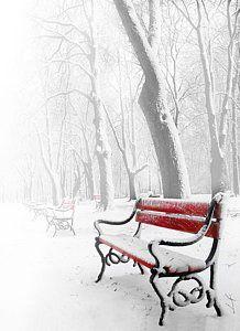 La fotografía del paisaje del invierno - Banco rojo en la nieve por Jaroslaw Grudzinski