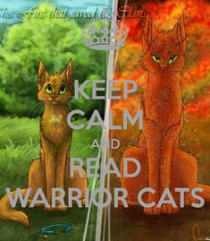 warriors cats - Google Search