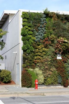 Green Wall at Semiahmoo Library. Surrey, BC