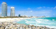 Y a-t-il plus à visiter à Miami que des plages et boire des cocktails ? Découvre que voir et que faire à Miami et notre visite sous le signe de l'art. South Beach, Miami Beach, Cocktails, Water, Outdoor, Places To Visit, Florida, The Neighborhood, Beaches