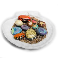 Hand Painted Rocks - A Shell Full of Sea Life - Interactive Art Piece - Cute Lil' Ocean Critters