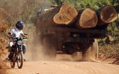 A man on a motorbike looks at a lorry transporting illegally harvested Amazon rainforest logs on a road near the Arariboia Indigenous Reserve, Maranhao state
