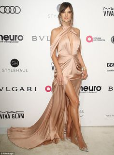 Here she comes: Making her presence felt at Elton John's 25th Annual AIDS Foundation Acade...