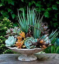 'Floral-Style' Succulent Container Arrangement by The Succulent Perch. Available for purchase in San Diego County, CA www.thesucculentp… The Effective Pictures We Offer You About Container gardening planters A quality picture can tell you many … Succulents In Containers, Container Plants, Cacti And Succulents, Planting Succulents, Container Gardening, Planting Flowers, Container Flowers, Succulent Gardening, Succulent Terrarium