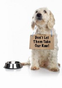 If you support a raw, BARF Diet for your dog or pets, youll want to know that. Raw Pet Food, Raw Food Diet, Paleo Diet, Cat Health Care, Dog Nutrition, Dog Diet, Homemade Dog Food, Buy A Cat, Dog Boarding