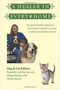 cats, weight, orang, dogs, healthi anim, anim shelter, homes, holist, natur remedi