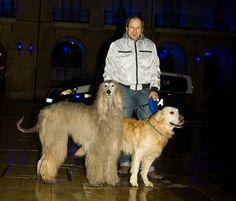 Con Cuper y Adur en la Plaza del Ayuntamiento de Oviedo