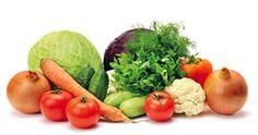 ajudar as pessoas a reflectirem na sua alimentação, assim como, proporcionar receitas saudáveis com frutas, vegetais e legumes que podem ser consumidos por qualquer pessoa e em qualquer lugar.  Desde 1996 que se dedica às terapias alternativas
