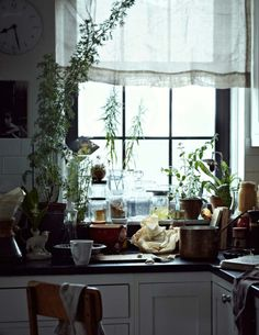 white, paned window, copper pots, plants, jarred food