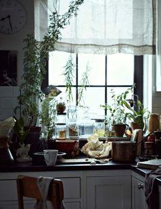 white, paned window, copper pots, plants, jarred food
