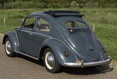 (Large) Enter your pin description here. Volkswagen, Beetle, Bmw, Vehicles, Sports, Vintage, June Bug, Hs Sports, Beetles