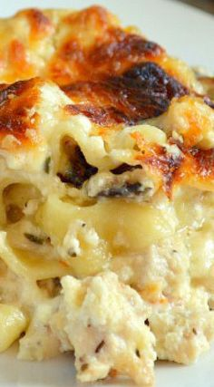 An amazingly cheesy chicken lasagna that kicks ass! Kick Ass Chicken Lasagna is THE BEST. It is also perfect to take to a neighbor or friend. Chicken Thights Recipes, Chicken Parmesan Recipes, Healthy Chicken Recipes, Cooking Recipes, Recipe Chicken, Chicken Lasagna Recipes, Pizza Recipes, Chicken Salad, Fish Recipes